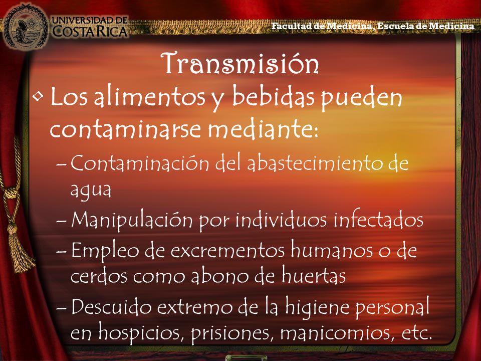 Transmisión Los alimentos y bebidas pueden contaminarse mediante: –Contaminación del abastecimiento de agua –Manipulación por individuos infectados –E