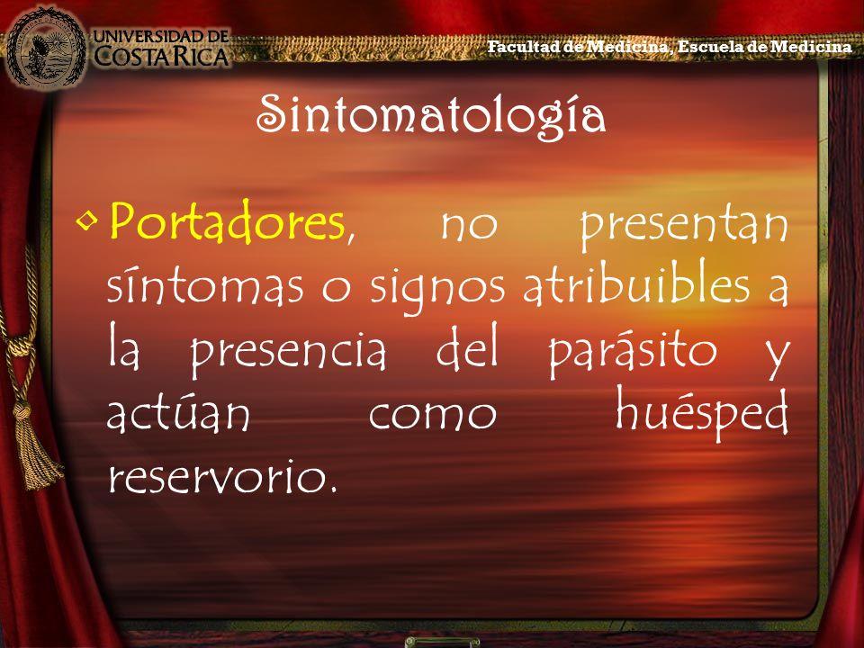 Sintomatología Portadores, no presentan síntomas o signos atribuibles a la presencia del parásito y actúan como huésped reservorio. Facultad de Medici