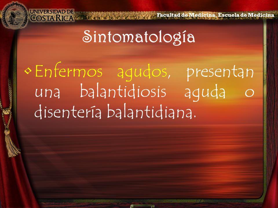 Sintomatología Enfermos agudos, presentan una balantidiosis aguda o disentería balantidiana. Facultad de Medicina, Escuela de Medicina