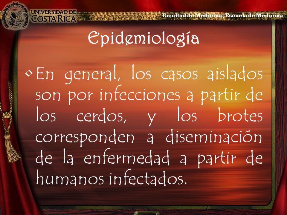 Epidemiología En general, los casos aislados son por infecciones a partir de los cerdos, y los brotes corresponden a diseminación de la enfermedad a p