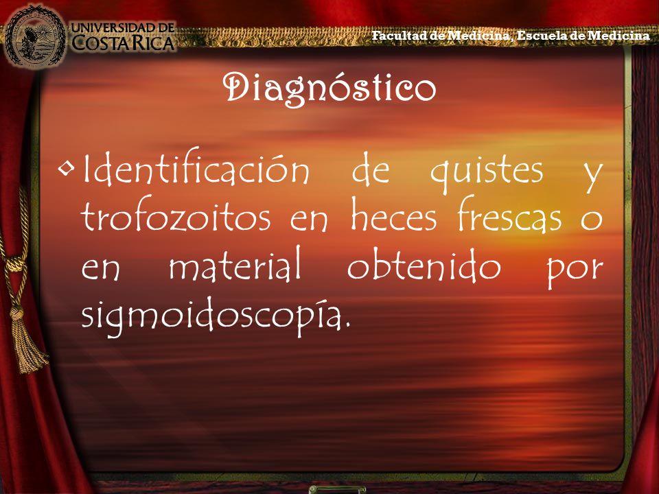 Diagnóstico Identificación de quistes y trofozoitos en heces frescas o en material obtenido por sigmoidoscopía. Facultad de Medicina, Escuela de Medic