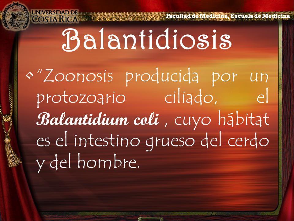 Balantidiosis Zoonosis producida por un protozoario ciliado, el Balantidium coli, cuyo hábitat es el intestino grueso del cerdo y del hombre. Facultad