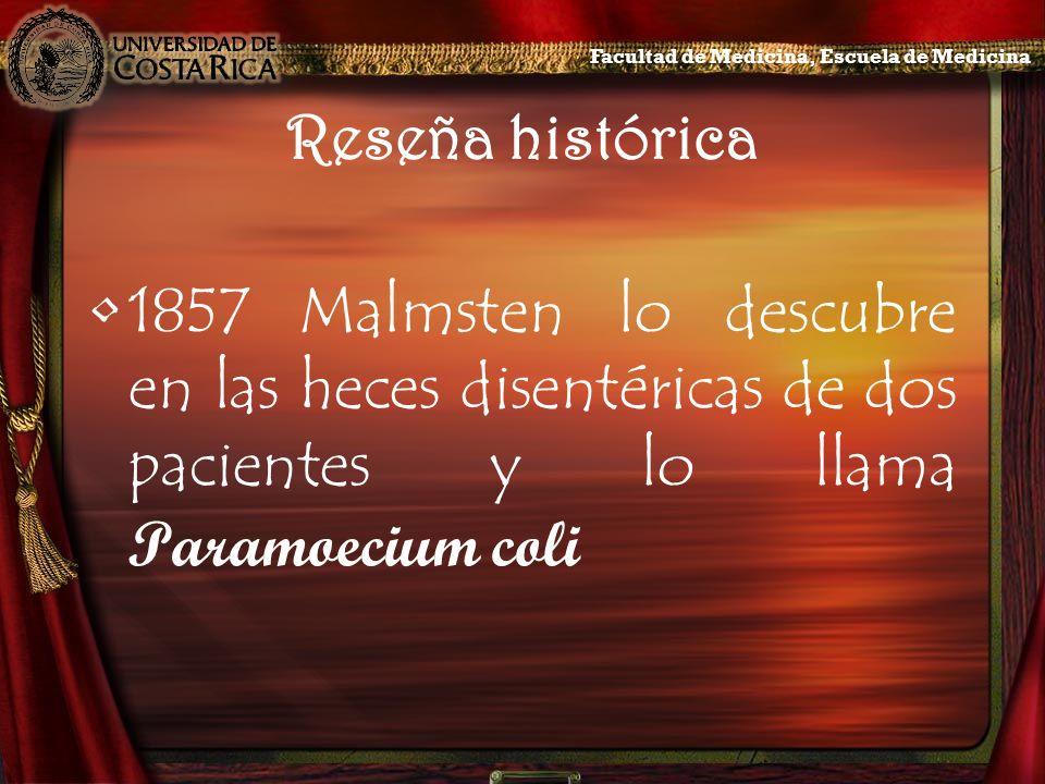 Reseña histórica 1857Malmsten lo descubre en las heces disentéricas de dos pacientes y lo llama Paramoecium coli Facultad de Medicina, Escuela de Medi