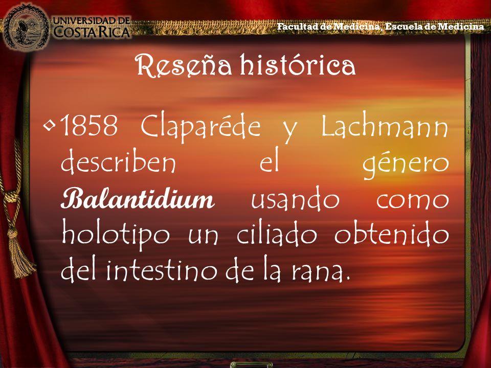 Reseña histórica 1858Claparéde y Lachmann describen el género Balantidium usando como holotipo un ciliado obtenido del intestino de la rana. Facultad