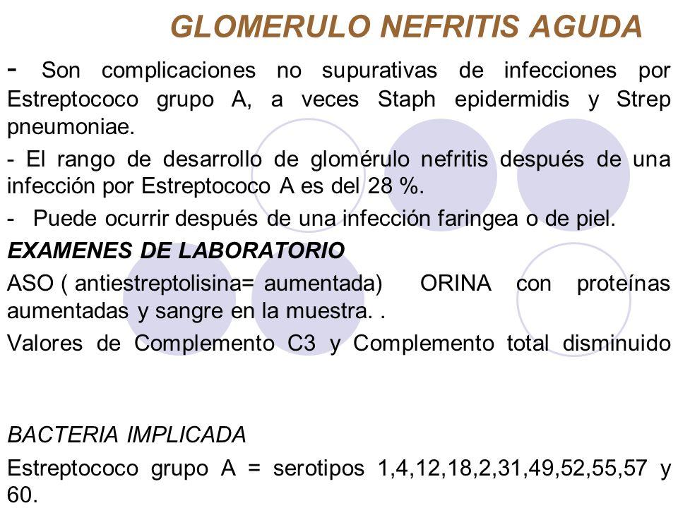 GLOMERULO NEFRITIS AGUDA - Son complicaciones no supurativas de infecciones por Estreptococo grupo A, a veces Staph epidermidis y Strep pneumoniae. -