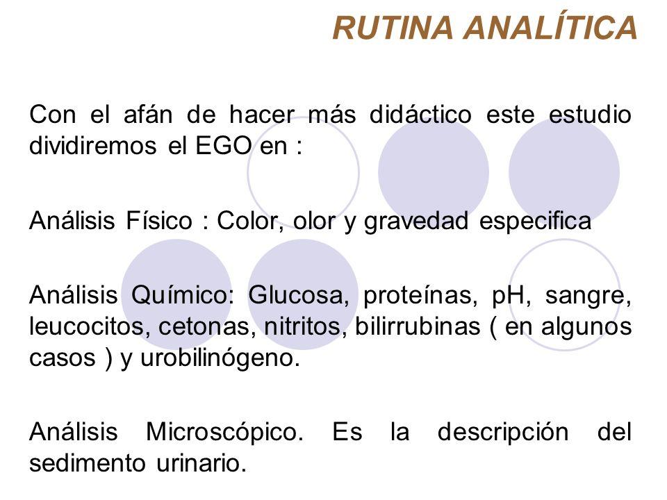 RUTINA ANALÍTICA Con el afán de hacer más didáctico este estudio dividiremos el EGO en : Análisis Físico : Color, olor y gravedad especifica Análisis