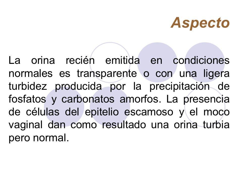 Aspecto La orina recién emitida en condiciones normales es transparente o con una ligera turbidez producida por la precipitación de fosfatos y carbona