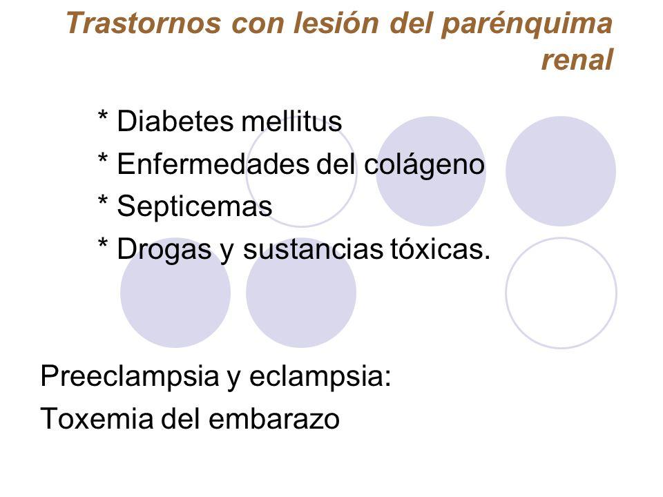 Trastornos con lesión del parénquima renal * Diabetes mellitus * Enfermedades del colágeno * Septicemas * Drogas y sustancias tóxicas. Preeclampsia y