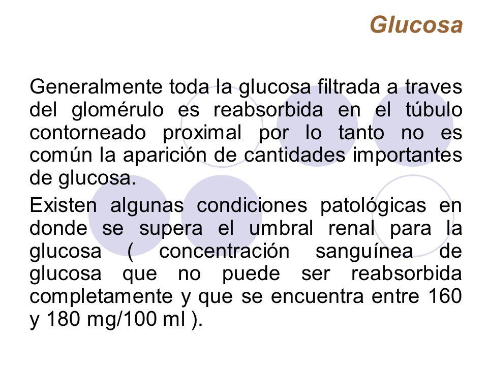 Glucosa Generalmente toda la glucosa filtrada a traves del glomérulo es reabsorbida en el túbulo contorneado proximal por lo tanto no es común la apar