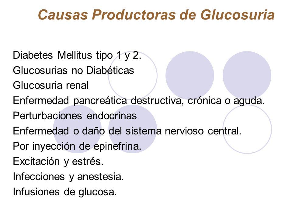 Causas Productoras de Glucosuria Diabetes Mellitus tipo 1 y 2. Glucosurias no Diabéticas Glucosuria renal Enfermedad pancreática destructiva, crónica