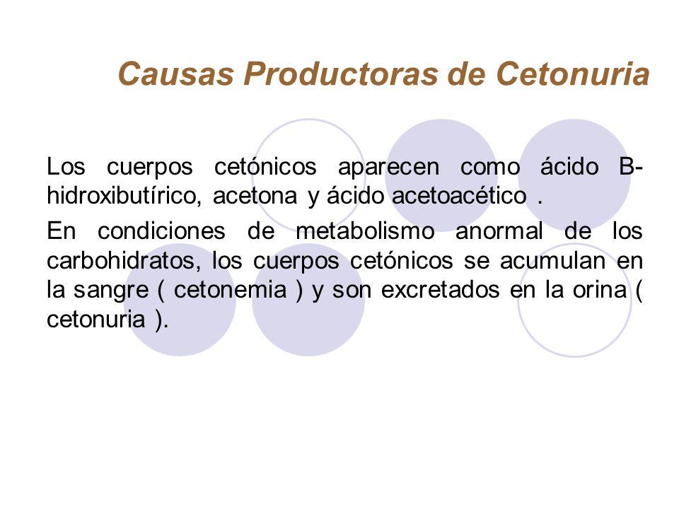 Causas Productoras de Cetonuria Los cuerpos cetónicos aparecen como ácido B- hidroxibutírico, acetona y ácido acetoacético. En condiciones de metaboli