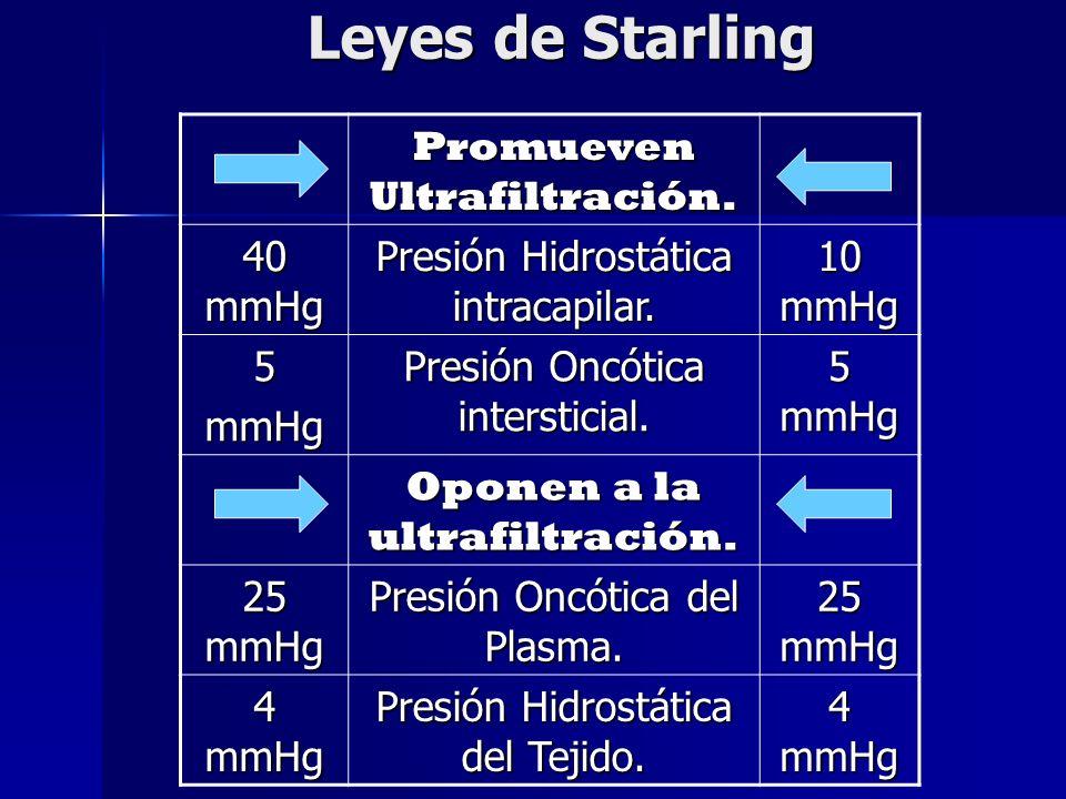 Leyes de Starling Promueven Ultrafiltración. 40 mmHg Presión Hidrostática intracapilar. 10 mmHg 5mmHg Presión Oncótica intersticial. 5 mmHg Oponen a l