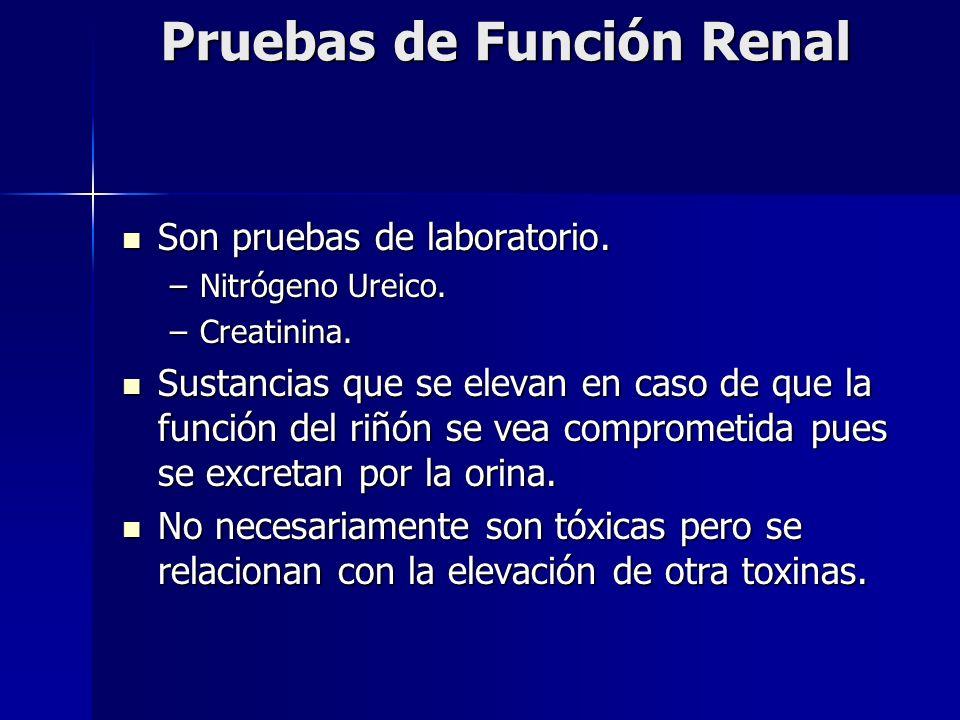 Son pruebas de laboratorio. Son pruebas de laboratorio. –Nitrógeno Ureico. –Creatinina. Sustancias que se elevan en caso de que la función del riñón s