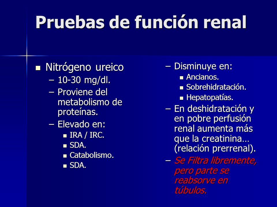 Pruebas de función renal Nitrógeno ureico Nitrógeno ureico –10-30 mg/dl. –Proviene del metabolismo de proteínas. –Elevado en: IRA / IRC. IRA / IRC. SD