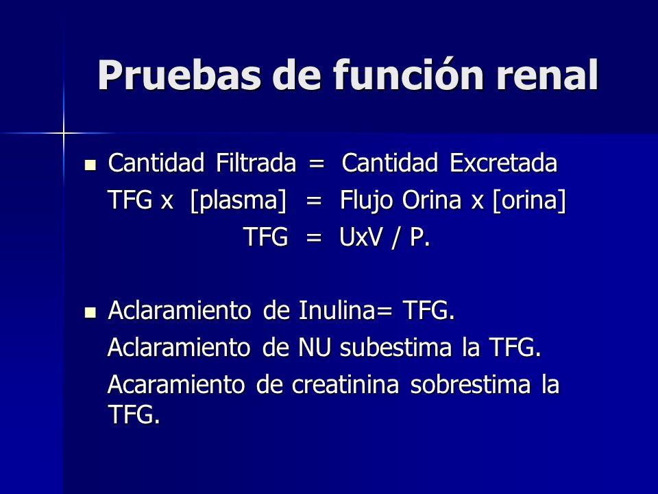 Pruebas de función renal Cantidad Filtrada = Cantidad Excretada Cantidad Filtrada = Cantidad Excretada TFG x [plasma] = Flujo Orina x [orina] TFG x [p