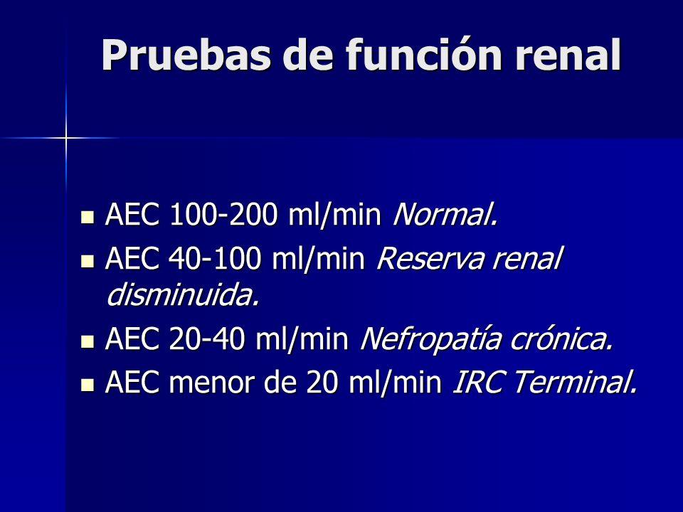 Pruebas de función renal AEC 100-200 ml/min Normal. AEC 100-200 ml/min Normal. AEC 40-100 ml/min Reserva renal disminuida. AEC 40-100 ml/min Reserva r