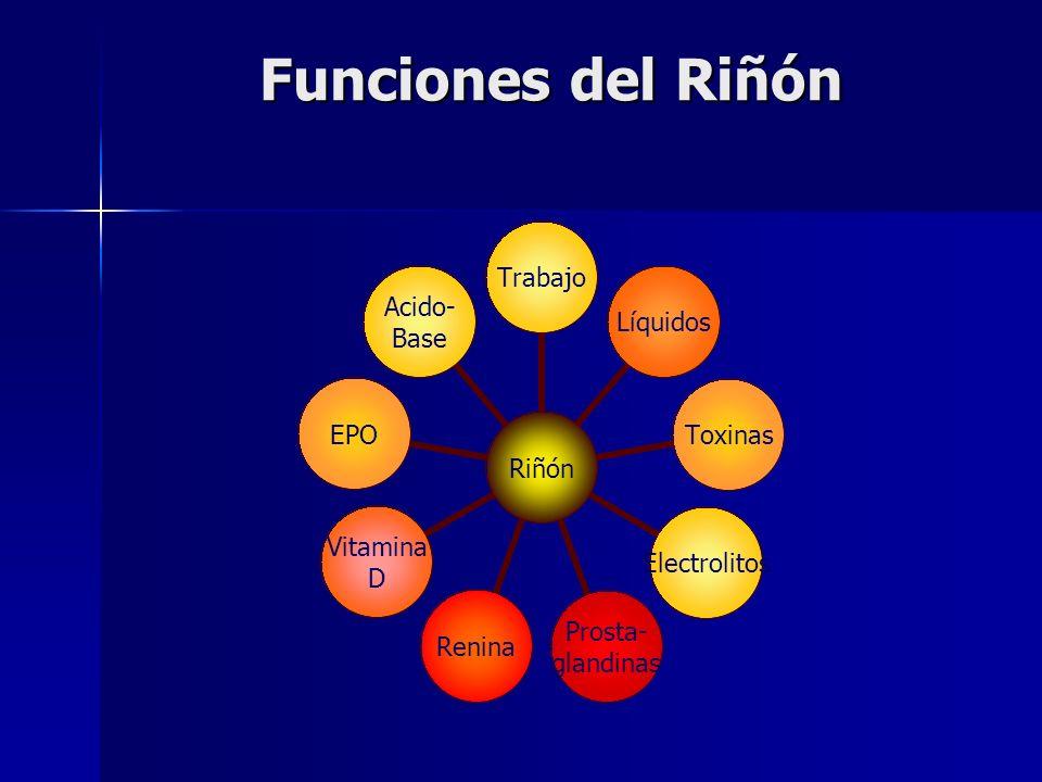 Riñón TrabajoLíquidosToxinasElectrolitos Prosta- glandinas Renina Vitamina D EPO Acido- Base Funciones del Riñón