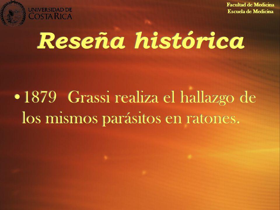 Reseña histórica 1879Grassi realiza el hallazgo de los mismos parásitos en ratones. Facultad de Medicina Escuela de Medicina