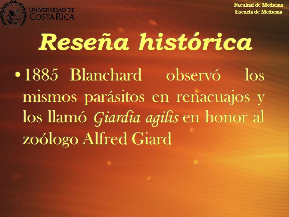 Reseña histórica 1885Blanchard observó los mismos parásitos en renacuajos y los llamó Giardia agilis en honor al zoólogo Alfred Giard Facultad de Medi