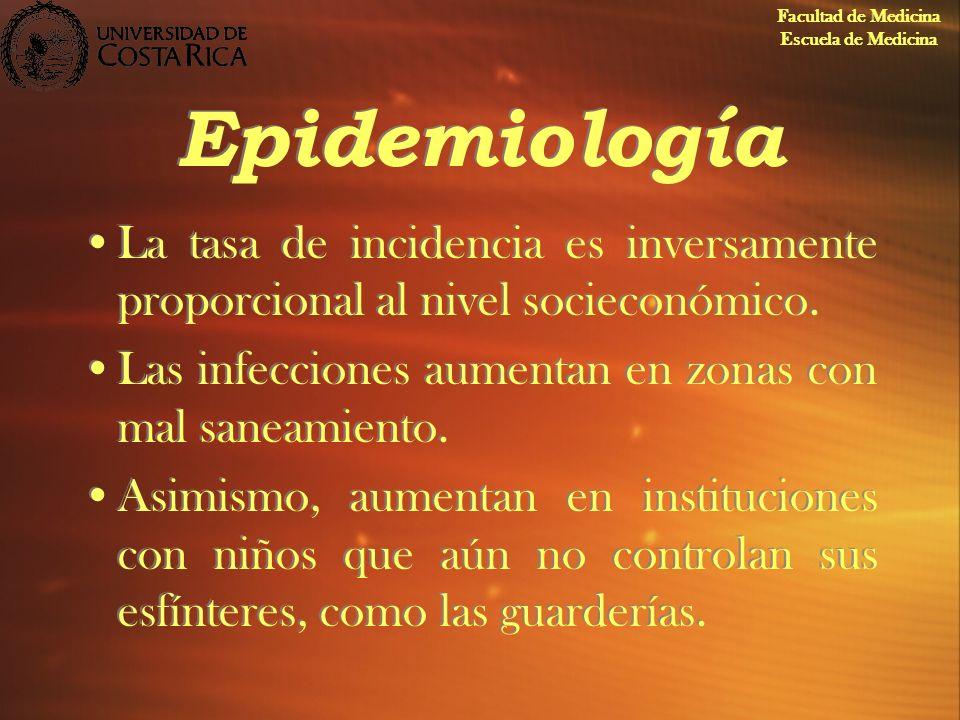 Epidemiología La tasa de incidencia es inversamente proporcional al nivel socieconómico. Las infecciones aumentan en zonas con mal saneamiento. Asimis
