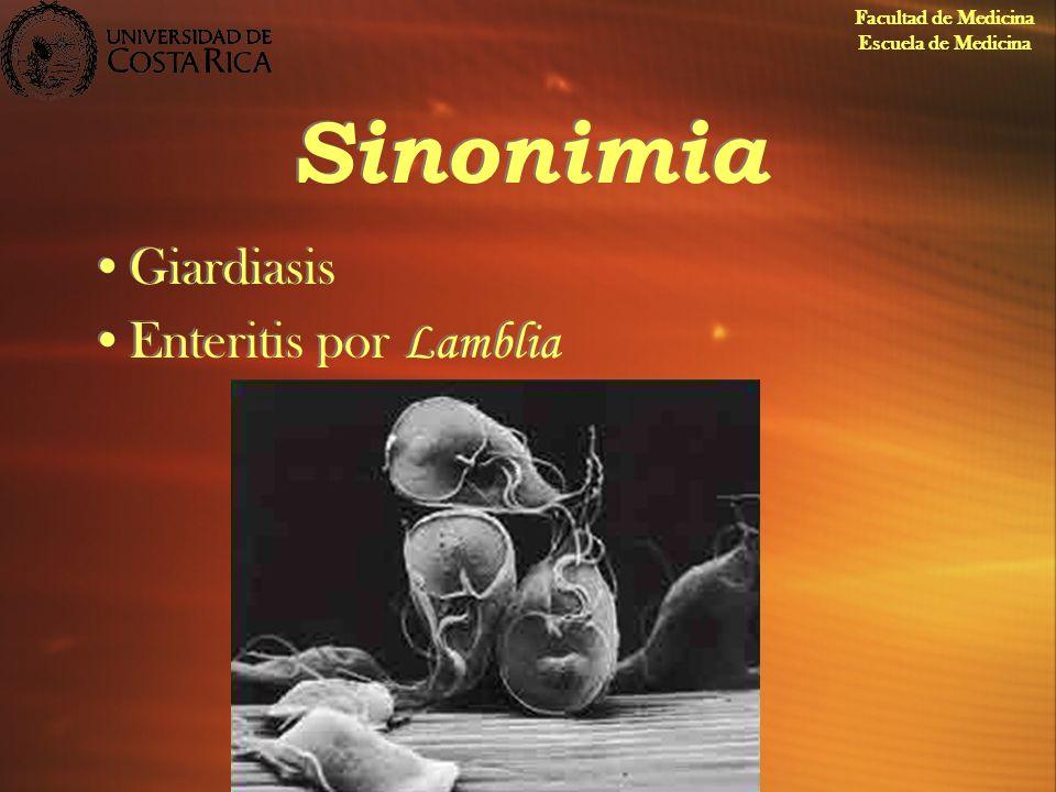 Sinonimia Giardiasis Enteritis por Lamblia Giardiasis Enteritis por Lamblia Facultad de Medicina Escuela de Medicina