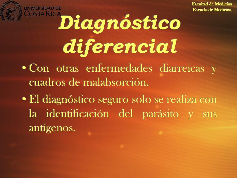Diagnóstico diferencial Con otras enfermedades diarreicas y cuadros de malabsorción. El diagnóstico seguro solo se realiza con la identificación del p