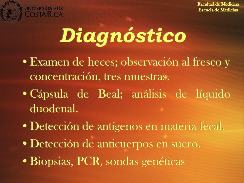 Diagnóstico Examen de heces; observación al fresco y concentración, tres muestras. Cápsula de Beal; análisis de líquido duodenal. Detección de antígen