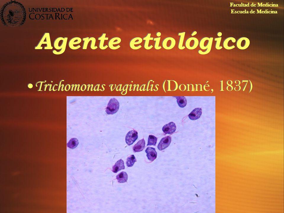 Agente etiológico Trichomonas vaginalis (Donné, 1837) Facultad de Medicina Escuela de Medicina