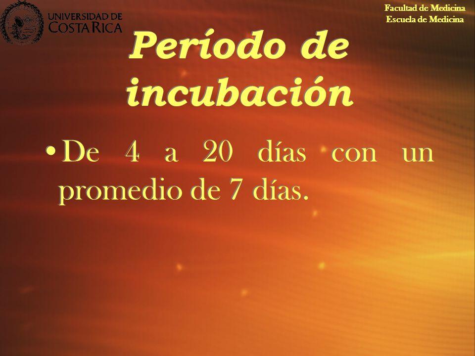 Período de incubación De 4 a 20 días con un promedio de 7 días. Facultad de Medicina Escuela de Medicina