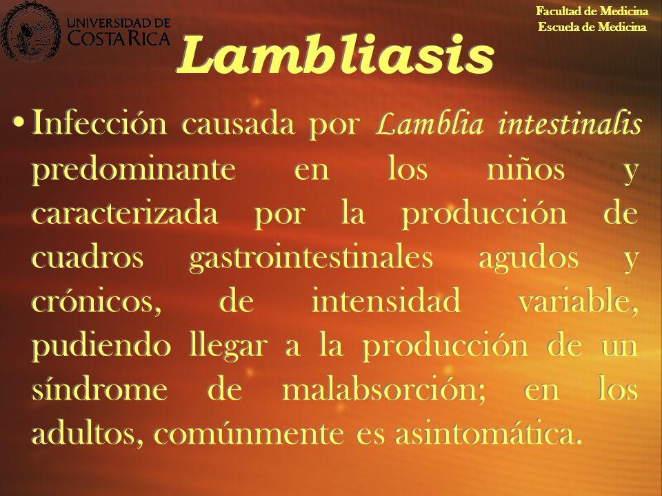 Lambliasis Infección causada por Lamblia intestinalis predominante en los niños y caracterizada por la producción de cuadros gastrointestinales agudos
