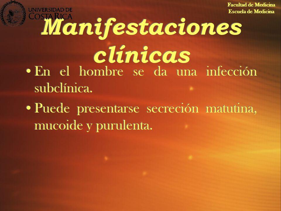 Manifestaciones clínicas En el hombre se da una infección subclínica. Puede presentarse secreción matutina, mucoide y purulenta. En el hombre se da un