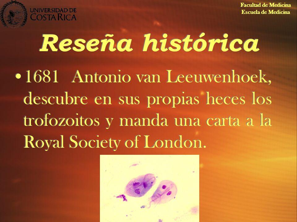 Reseña histórica 1681Antonio van Leeuwenhoek, descubre en sus propias heces los trofozoitos y manda una carta a la Royal Society of London. Facultad d