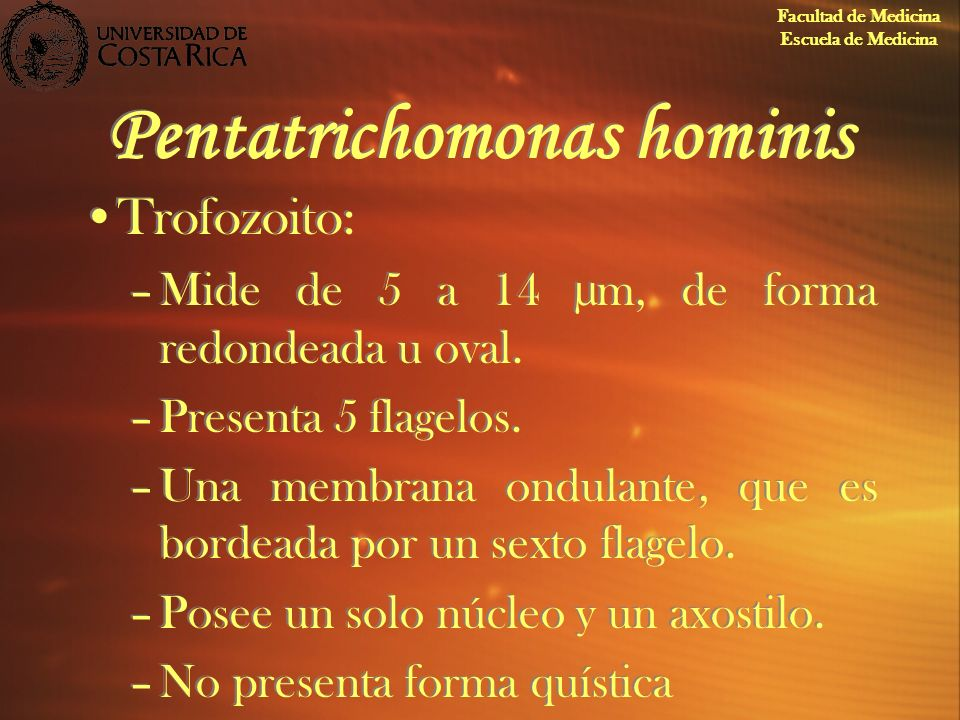 Pentatrichomonas hominis Trofozoito: –Mide de 5 a 14 µm, de forma redondeada u oval. –Presenta 5 flagelos. –Una membrana ondulante, que es bordeada po