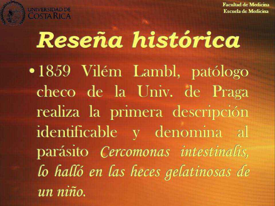 Reseña histórica 1859Vilém Lambl, patólogo checo de la Univ. de Praga realiza la primera descripción identificable y denomina al parásito Cercomonas i