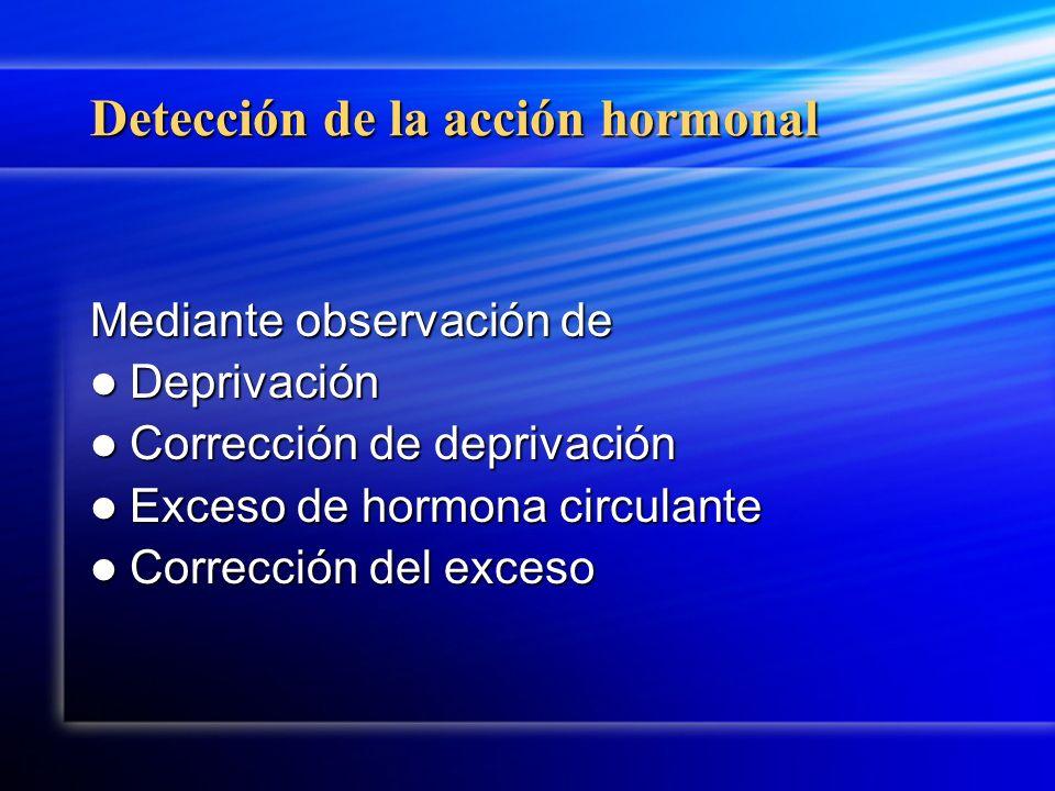Detección de la acción hormonal Mediante observación de Deprivación Deprivación Corrección de deprivación Corrección de deprivación Exceso de hormona