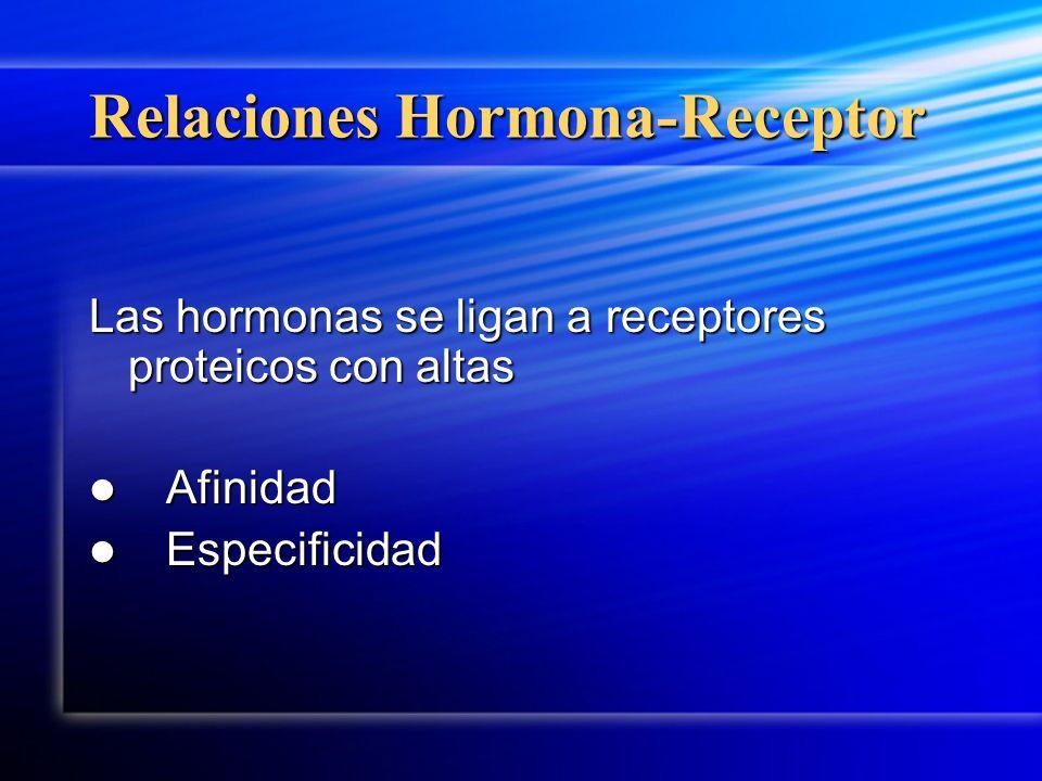 Relaciones Hormona-Receptor Las hormonas se ligan a receptores proteicos con altas Afinidad Afinidad Especificidad Especificidad