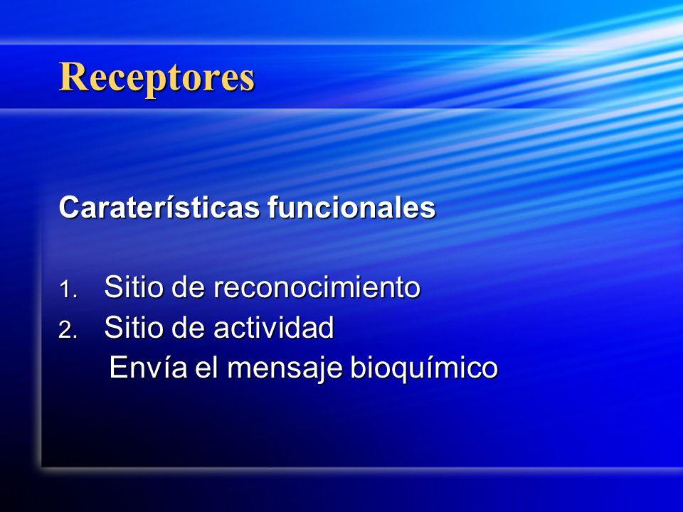 Receptores Caraterísticas funcionales 1. Sitio de reconocimiento 2. Sitio de actividad Envía el mensaje bioquímico Envía el mensaje bioquímico