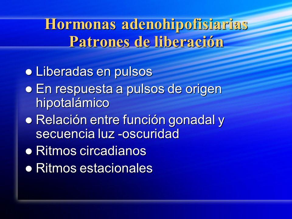Hormonas adenohipofisiarias Patrones de liberación Liberadas en pulsos Liberadas en pulsos En respuesta a pulsos de origen hipotalámico En respuesta a