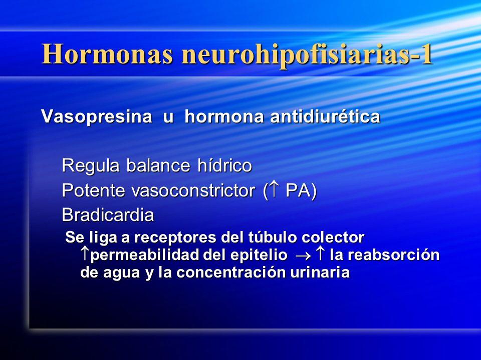 Hormonas neurohipofisiarias-1 Vasopresina u hormona antidiurética Regula balance hídrico Regula balance hídrico Potente vasoconstrictor ( PA) Potente