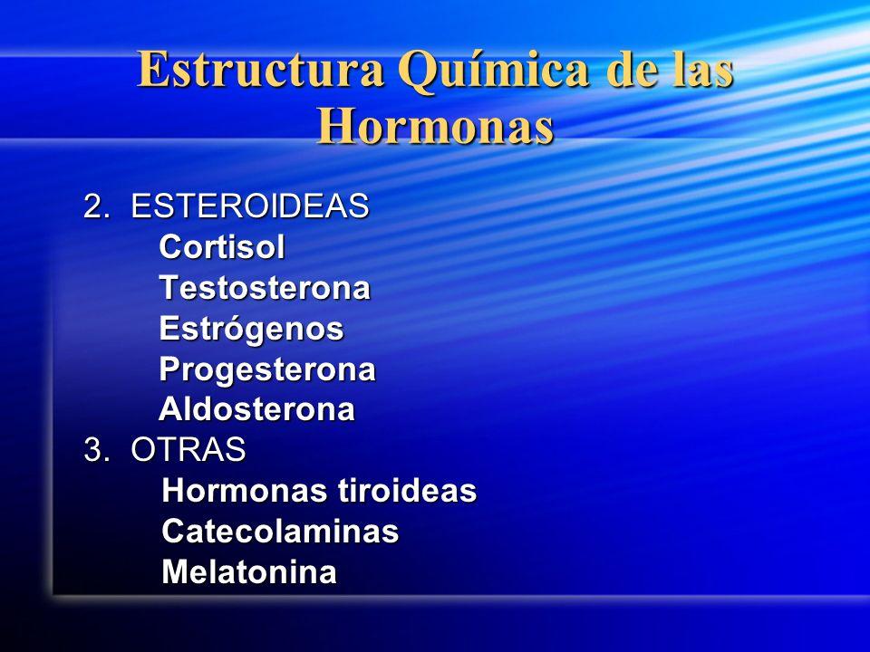 Estructura Química de las Hormonas 2. ESTEROIDEAS 2. ESTEROIDEAS Cortisol Cortisol Testosterona Testosterona Estrógenos Estrógenos Progesterona Proges