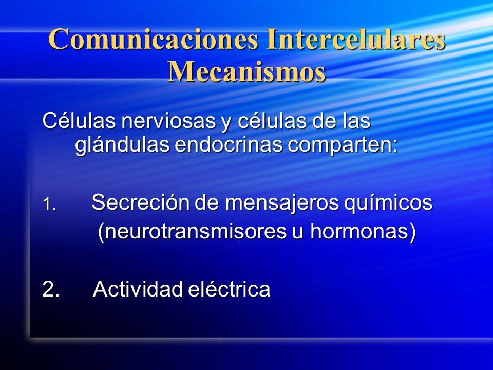 Comunicaciones Intercelulares Mecanismos Células nerviosas y células de las glándulas endocrinas comparten: 1. Secreción de mensajeros químicos (neuro