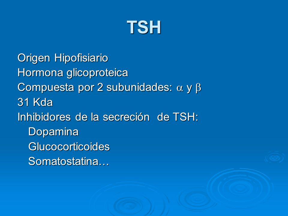 TSH Origen Hipofisiario Hormona glicoproteica Compuesta por 2 subunidades: y Compuesta por 2 subunidades: y 31 Kda Inhibidores de la secreción de TSH: