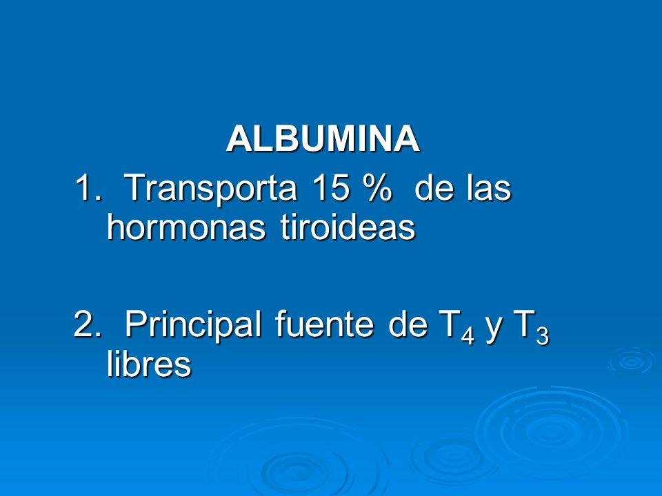 ALBUMINA 1. Transporta 15 % de las hormonas tiroideas 2. Principal fuente de T 4 y T 3 libres