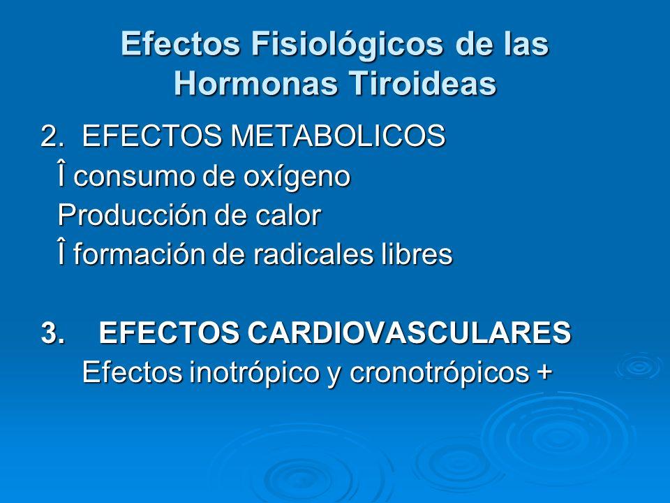 Efectos Fisiológicos de las Hormonas Tiroideas 2. EFECTOS METABOLICOS Î consumo de oxígeno Î consumo de oxígeno Producción de calor Producción de calo