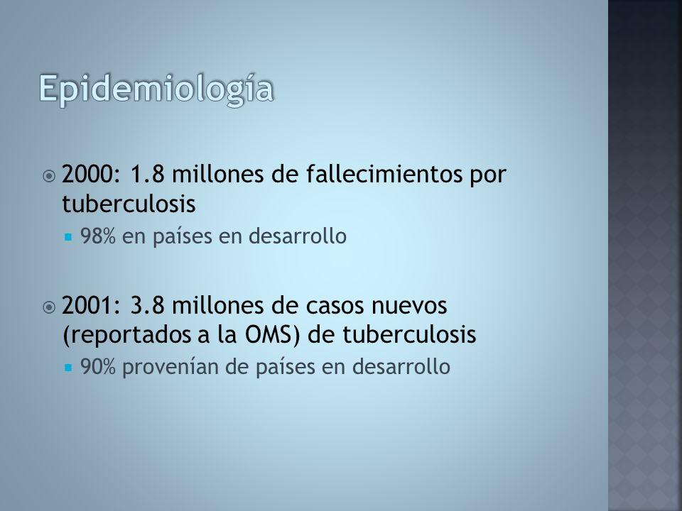 2000: 1.8 millones de fallecimientos por tuberculosis 98% en países en desarrollo 2001: 3.8 millones de casos nuevos (reportados a la OMS) de tubercul