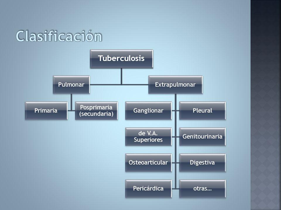 Tuberculosis Pulmonar Primaria Posprimaria (secundaria) Extrapulmonar GanglionarPleural de V.A. Superiores Genitourinaria OsteoarticularDigestiva Peri
