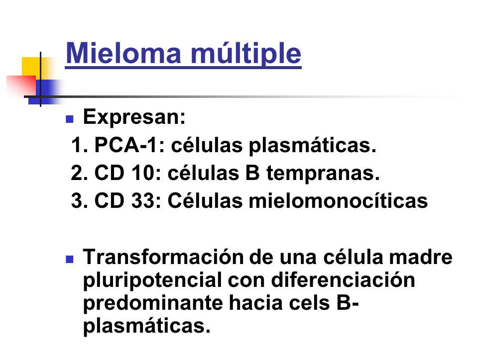 Mieloma múltiple Expresan: 1. PCA-1: células plasmáticas. 2. CD 10: células B tempranas. 3. CD 33: Células mielomonocíticas Transformación de una célu