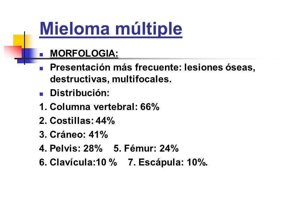 Mieloma múltiple MORFOLOGIA: Presentación más frecuente: lesiones óseas, destructivas, multifocales. Distribución: 1. Columna vertebral: 66% 2. Costil