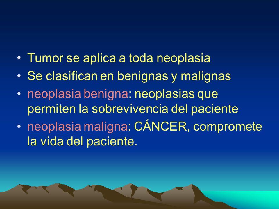 Nomenclatura Dos componentes en todos los tumores células neoplásicas transformadas ( parénquima ) Estroma de sostén elementos no transformados como el tejido conjuntivo y vasos sanguíneos necesarios para la sobrevivencia del tumor.