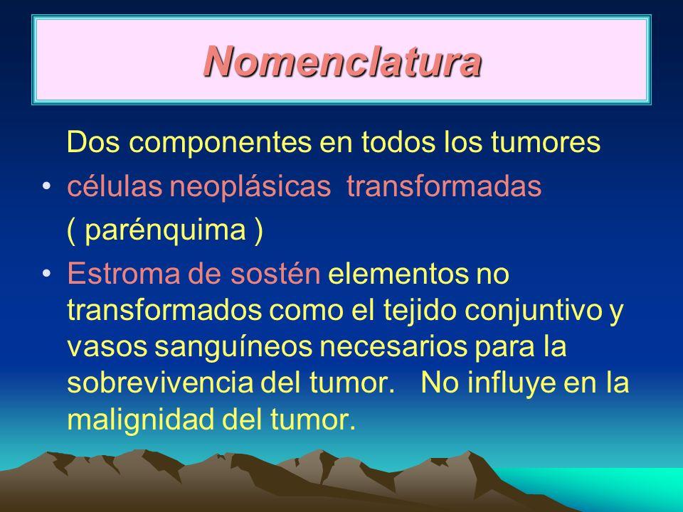 malignos vasos sanguíneos: hemangiosarcoma tejido fibroso: fibrosarcoma